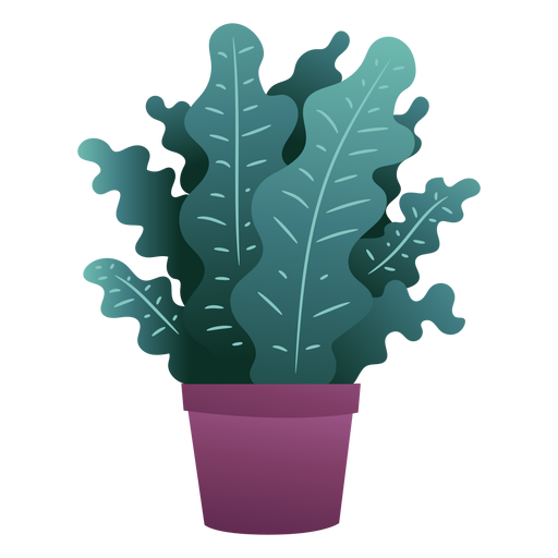 Cute plant in pot