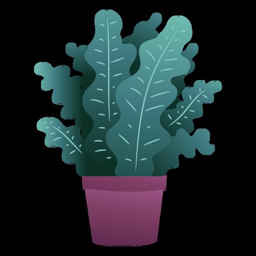 Linda planta en maceta