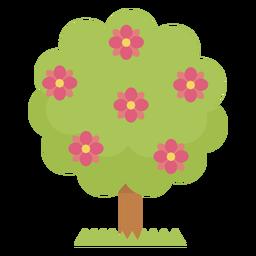 Lindas flores de arbol
