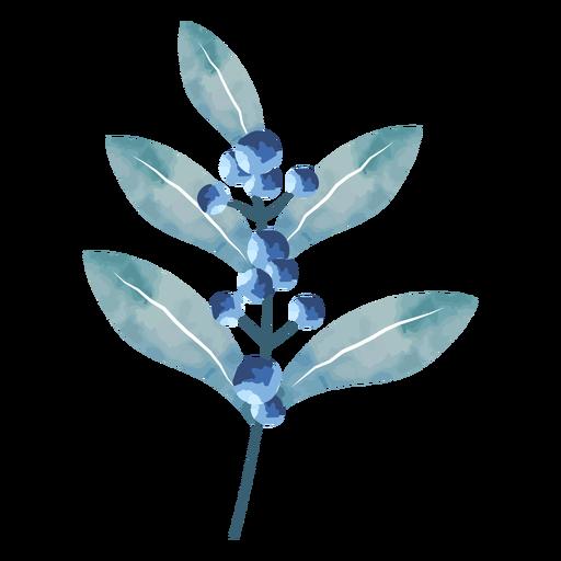 Lindas hojas de bayas de acuarela