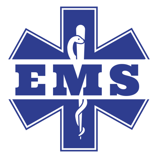Emergency medical services badge