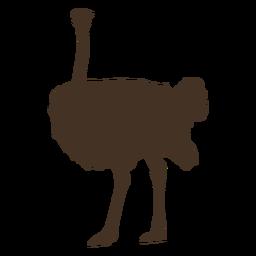 Gran silueta de avestruz