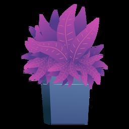 Caja de plantas animadas