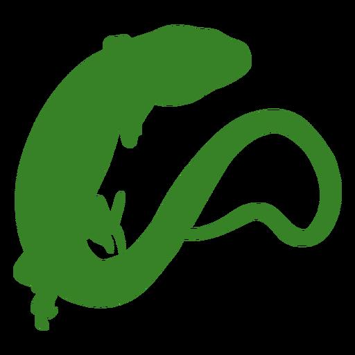 Lizard silhouette close up
