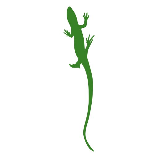 Lizard silhouette crawl up
