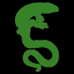 Silueta de lagarto de cola larga
