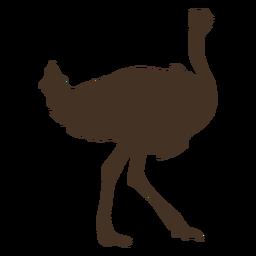 Vista lateral de silhueta de avestruz