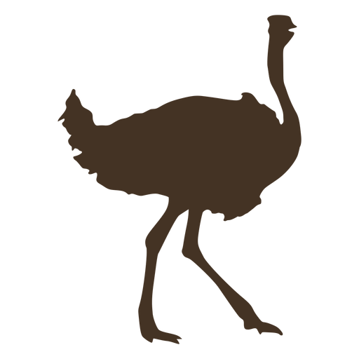 Ostrich silhouette side view Transparent PNG