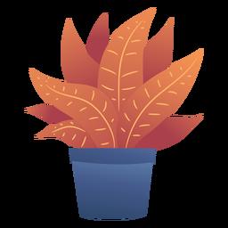Bonita caja de plantas
