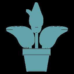 Silhouette cute anthurium plant