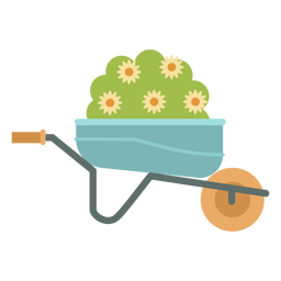 Wheelbarrow plant gardening