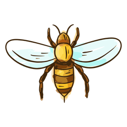 Cute honey bee