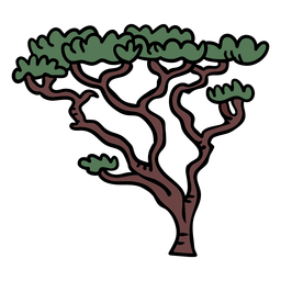 Elemento bonsai coreano