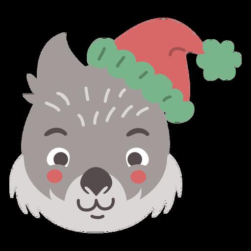 Adorable australian wombat head