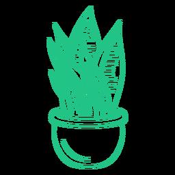 Onesie planta vertical macetero