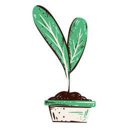 Plant bud illustration element