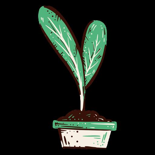 Elemento de ilustración de brote de planta