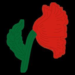 Vista lateral izquierda de la flor de amapola