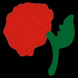 Vista posterior de la flor de amapola