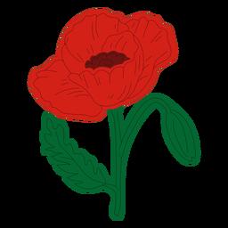 Dibujo a mano de flor de amapola