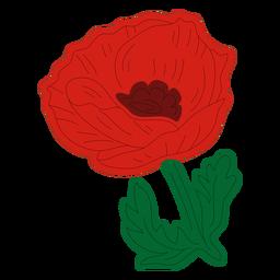 Poppy leafy flower