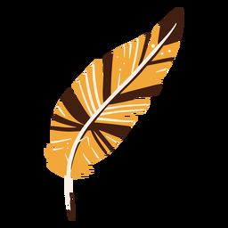 Elemento dibujado a mano de escritura de pluma