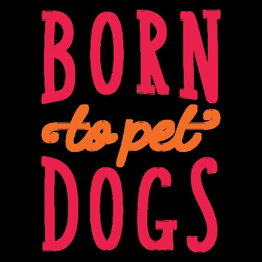 Nacido para mascotas letras de perros