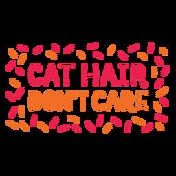 Cabelo de gato não se importa letras