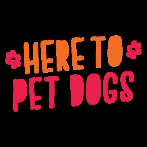Aqui para letras de cães de estimação