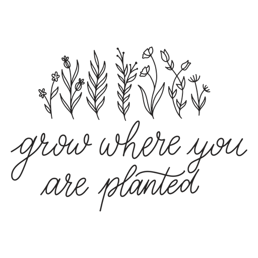 Inspirational quote lettering