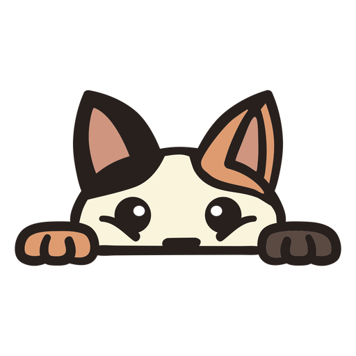 Peekaboo lindo gato plano Transparent PNG