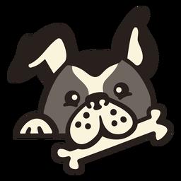 Cão peekaboo com osso liso