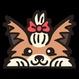 Cão peekaboo com gravata borboleta plana