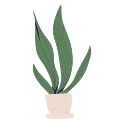 Plant in white pot illustration