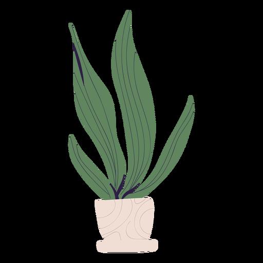 Plant in white pot illustration