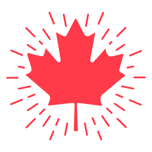 Shinning maple leaf flat Transparent PNG