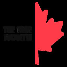 Verdadera hoja de arce del norte plana