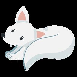 Raposa branca fofa