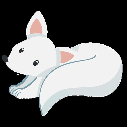 Cute white fox Transparent PNG