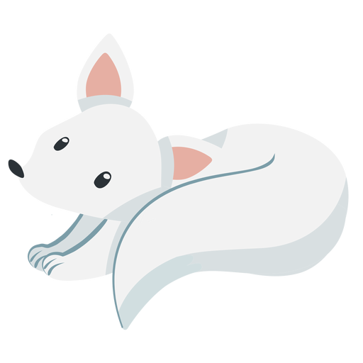 Cute white fox