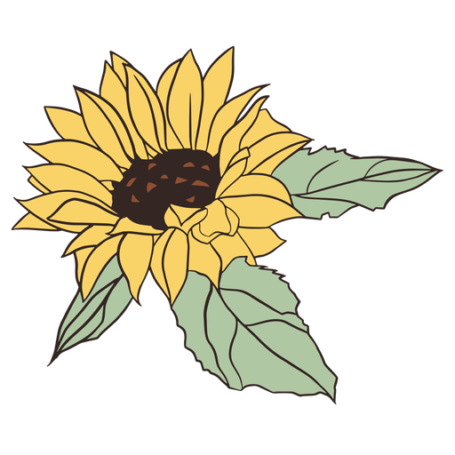 Pretty hand drawn sunflower