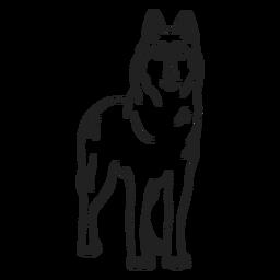 Golpe de lobo animal
