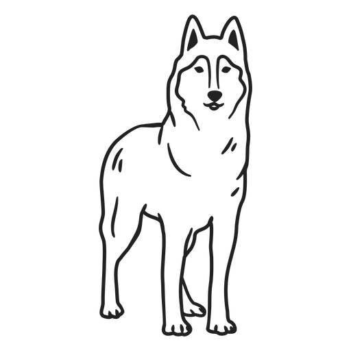 Animal wolf stroke Transparent PNG