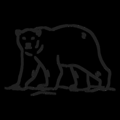 Doodle bear stroke Transparent PNG