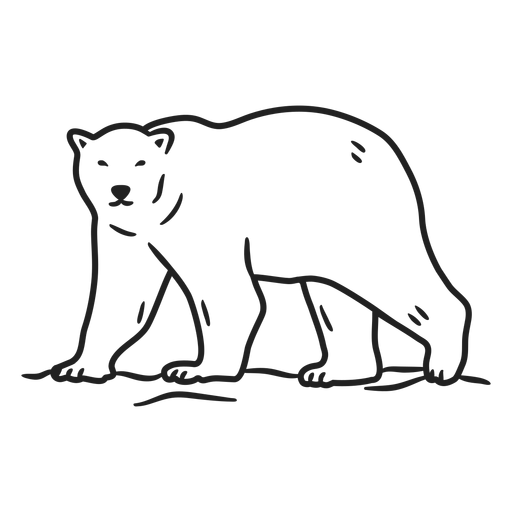 Doodle de trazo de oso