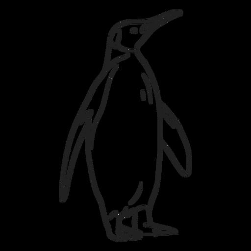 Doodle de trazo de pingüino
