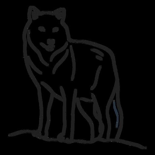 Doodle lobo trazo Transparent PNG