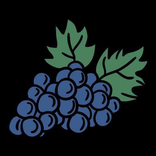 Dibujado a mano racimo de uvas