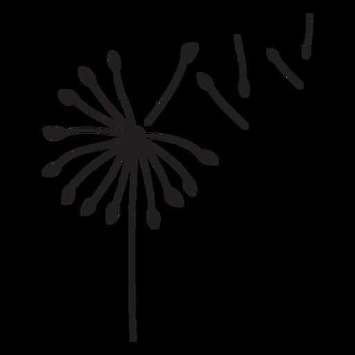 Dandelion buds single flying stroke