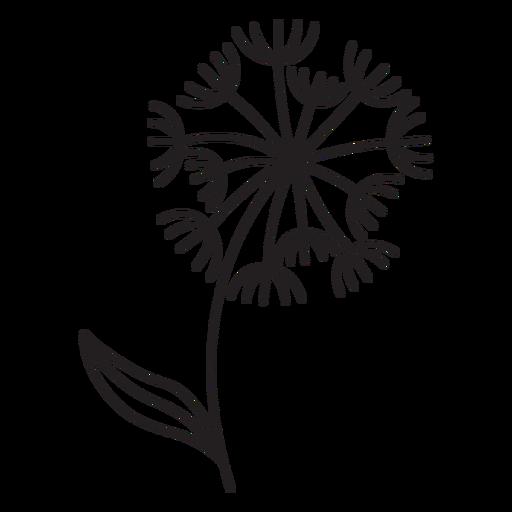 Dandelion variety stroke Transparent PNG